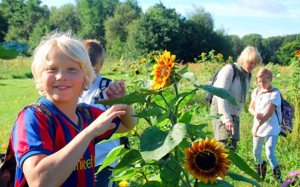 Specialklassen, i Økologiens Haves skolehave er vilde med havedagene. Foto: Ulla Skovsbøl
