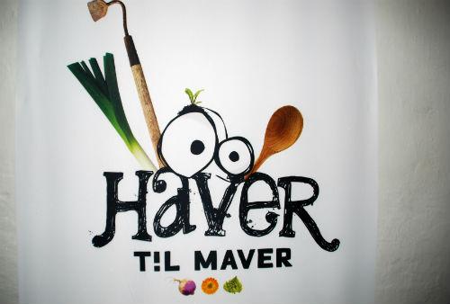 HavertilMaverLOGO_500
