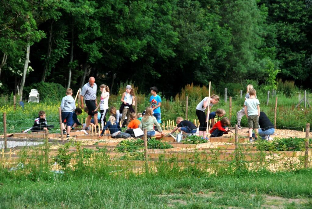 Haver til Maver, Natursamarbejdet, Brabrand. Foto: Ulla Skovbøl