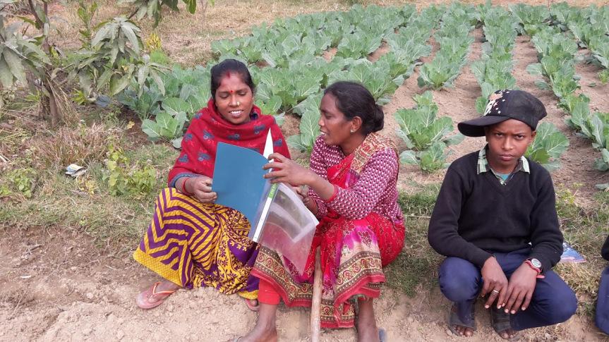 Elever i Nepal 1