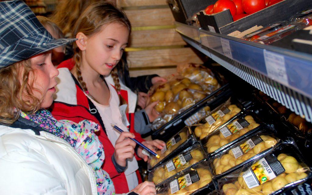 Elever fra Gudenåskolen tjekker kartoffelsorter i SuperBrugsen, Ry. Foto: Ulla Skovsbøl