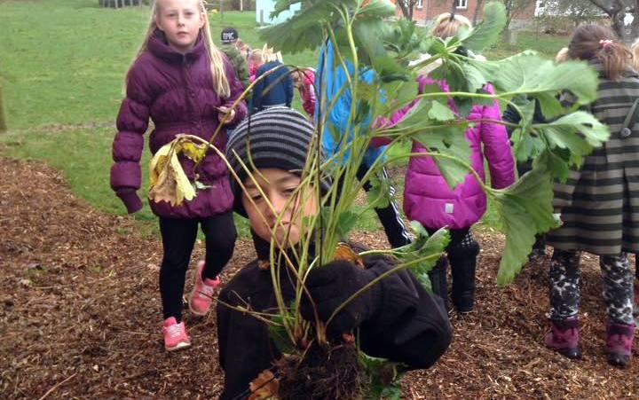 Havearbejde for børn