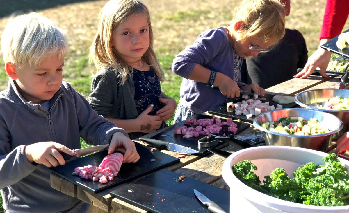 3000 børn i Furesø Kommune har haft økologisk skolehave på skemaet